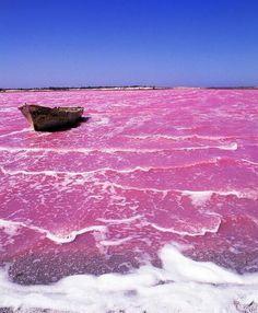 Pink Lake Retba, Senegal - East Africa | Full Dose