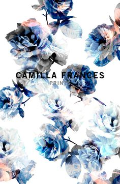 //CAMILLA FRANCES PRINTS