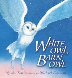 'White Owl, Barn Owl' by Nicola Davies and illustrated by Michael Foreman Candlewick