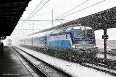 """Siemens 22202 - ČD """"193 291"""""""