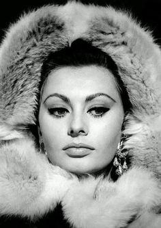 Sophia Loren (born Sofia Villani Scicolone, 20 September is an Italian film actress. Hollywood Glamour, Hollywood Actresses, Classic Hollywood, Old Hollywood, Loren Sofia, Divas, Sophia Loren Images, Best Actress Award, Empire Romain