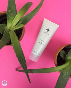 beautybabesns,wearebeautybabes-Have you tried Enhancer Skin Conditioning Gel? This lightweight moisturiser has a subtle cooling sensation that feels g Nu Skin, Skin Gel, Aloe Vera, Galvanic Spa, Love Your Skin, Moisturiser, Body Scrub, Anti Aging Skin Care, Products