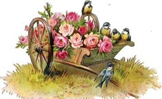Oblaten Glanzbild scrap die cut chromo Vogel bird Blumen Karre wheelbarrow rose