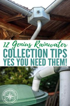 12 Genius Rainwater Collection Tips – Yes You Need Them! — If you're homesteading or prepping, you already know that securing a dependable source of water can be a challenge. When you're off the grid, or getting ready for the day that we're all off the gr Homestead Survival, Survival Prepping, Survival Shelter, Emergency Preparedness, Survival Equipment, Survival Hacks, Survival Quotes, Water Collection System, Water Storage