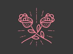 Roses are pink by Nate Bruzdzinski