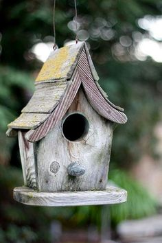 Beautiful Bird House Designs You Will Fall in Love with (3)
