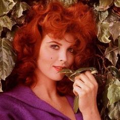 Tina Louise- Another gorgeous, Jewish redhead! Natural Redhead, Beautiful Redhead, Beautiful People, Beautiful Women, Tina Louise, Rita Hayworth, Lucille Ball, Ginger Grant, Red Heads Women