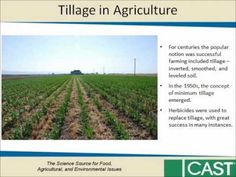 Herbicide-resistant Weeds Threaten Soil Conservation Gains: Finding a Ba. Successful Farming, Soil Conservation, Weed Control, Agriculture, It Cast, Outdoor, Outdoors, Weeding, Outdoor Games