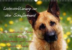 Liebeserklärung an den Schäferhund - CALVENDO