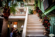 stairway to heaven Stairway To Heaven, Stairways, Colonial, Mood, Design, Home Decor, Stairs, Staircases, Decoration Home