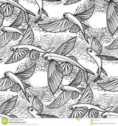 http://thumbs.dreamstime.com/z/graphic-flying-fish-pattern-drawn-line-art-style-sea-ocean-seamless-coloring-book-page-design-71117335.jpg