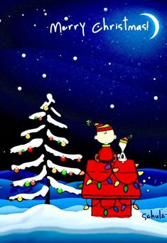 Merry Christmas Eve Snoopy discovered by AlichaLima♡ imagini diverse, imagini diverse desktop, and peanuts gang εικόνα Peanuts Christmas, Merry Christmas Eve, Christmas Quotes, Christmas Time, Snoopy Christmas Decorations, Christmas Thoughts, Christmas Presents, Charlie Brown Y Snoopy, Snoopy Love
