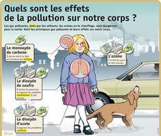 lpq25-quels-sont-les-effets-de-la-pollution-sur-notre-corps.jpg 675×571 pixels
