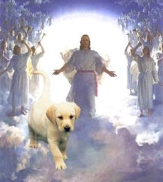 photoes of heaven for dogs All Dogs go to Heaven 3 Art