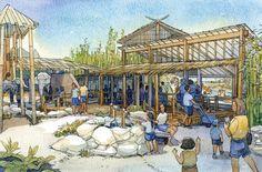 Phoenix Zoo - Sumatran Tiger Experience - WDM Architects