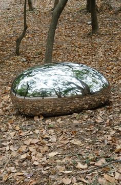 Reflections:Stainless Steel by Danny Lee Steel Sculpture, Sculpture Art, Garden Sculpture, Danny Lee, Reflection Art, Forest Art, Mirror Art, Outdoor Art, Environmental Art