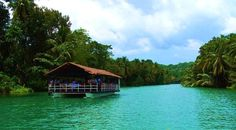 The Loboc Bohol, Philippines Dinner cruse. Come see why Bohol, Philippines is the best destination spot in the Philippines.