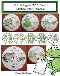 Frog activities: Life Cycle Of A Frog craft: 5 life cycle of a frog science story wheels. Includes realistic & cutesy graphic options, plus a writing prompt. Comes with BW patterns too. Frog Crafts Preschool, Frog Activities, Science Crafts, Science Ideas, Reading Activities, Guided Reading, Preschool Ideas, Sea Turtle Life Cycle, Colegio Ideas