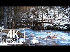 Der Sanfte Klang Des Gebirgsbaches im Winter/ Relaxing Sounds