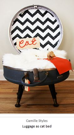 use old luggage for a cat or dog bed - diy - http://bluevelvetchair.blogspot.com