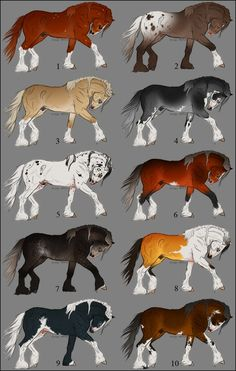 draftie point adoptables 2 [CLOSED] by eclissiluna on DeviantArt Cute Horses, Pretty Horses, Horse Love, Cute Animal Drawings, Animal Sketches, Horse Animation, Horse Coat Colors, Horse Markings, Beautiful Horse Pictures
