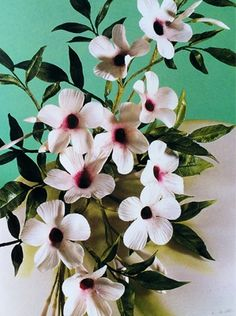 Masterclass in Exotic Sugar Flowers with Alan Dunn: Bauhinia, Bougainvillea and Bower of Beauty