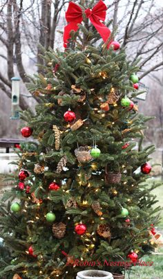 An outdoor Christmas tree covered in bird seed ornaments and pine cones would be great! Real Christmas Tree, Rustic Christmas, Xmas Tree, All Things Christmas, Christmas Holidays, Outdoor Christmas Trees, Primitive Christmas, Christmas 2017, Christmas Snowman