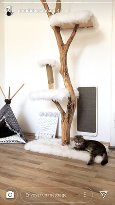 Comfy cat place with a nature scratching post, a Tipi and a scratching board Diy Cat Tree, Pet Hotel, Cat Scratching Post, Cat Enclosure, Cat Room, Cat Condo, Pet Furniture, Cat Wall, Cat Crafts