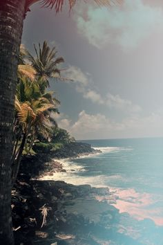 Puna, Hawaii   - Explore the World with Travel Nerd Nici, one Country at a Time. http://TravelNerdNici.com