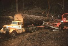 NOW THAT'S LOGGING