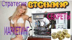 BTChamp Стратегия Секреты Обзор