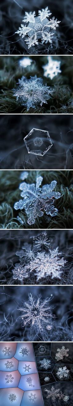 Snow flakes. In great detail.