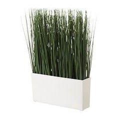 Stueplanter, blomster, krukker og urtepotteskjulere - Se udvalget