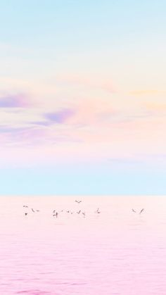 2019 minimalist wallpaper, pastel wallpaper ve wallpaper for your phone.