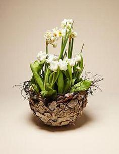 Fai da te - Il centrotavola di tulipani