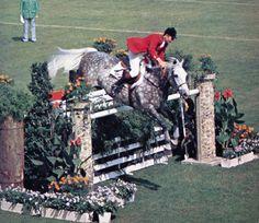 """equestiandreams: """" leath—hedger: """" Graziano Mancinelli """" """""""