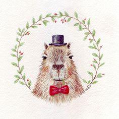 Sir Capybara