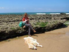 Pomar às cores: Malha na praia