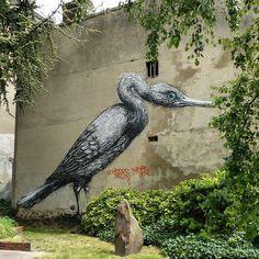 ROA mural, photo by: @d7606 - - - - - - - - - - - - - - - - - - - - - - - - - - - - - - - - - #streetart #roa #urbanart #mural #graffiti #welovestreetart #streetartfiles