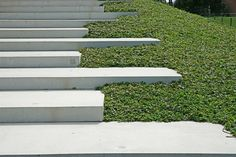 #contemporary landscape #concrete #steps Trainingcomplex Vitesse, Papendal (Arnhem). By Nico Wissing.