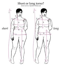 Short or long torso