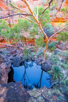 Kings Canyon Rim Walk, Northern Territory, Australia