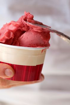 This fragrant strawberry and hibiscus sorbet recipe is fantastically refreshing, the perfect dessert for sultry summers.