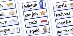 Under the Sea Word Cards - Word Card, Under the sea, sea
