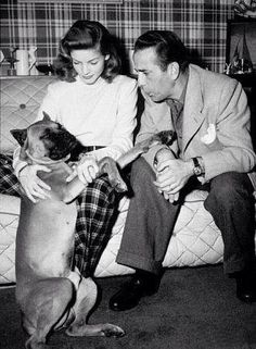 Lauren Bacall & Humphrey Bogart with their pet boxer at home, circa Hollywood Couples, Old Hollywood Stars, Golden Age Of Hollywood, Vintage Hollywood, Classic Hollywood, Humphrey Bogart, Lauren Bacall, Bogie And Bacall, Old Movies