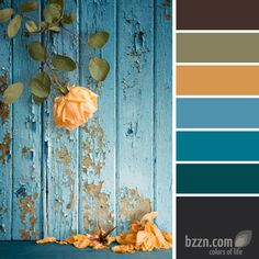 View top-quality stock photos of Wilted Rose Shedding Petals Against Peeling Painted Wall. Find premium, high-resolution stock photography at Getty Images. Scheme Color, Colour Schemes, Colour Combo, Wilted Rose, Tuscan Design, Colorful Roses, Blue Dream, Mellow Yellow, Color Pallets