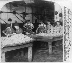 """The sausage department, Armour's great packing house, Chicago, U.S.A; 1893 """"Hot dogs...Armour Hot dogs! What kind of kids make Armour hot dogs?"""""""