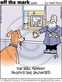KEYWORD1 1994-09-23 pavlov pavlovs dog pavlov's dog ivan pavlov experiment experiments