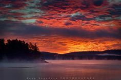 Morning Glory - Algonquin Park