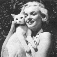 Marilyn & kitty friend